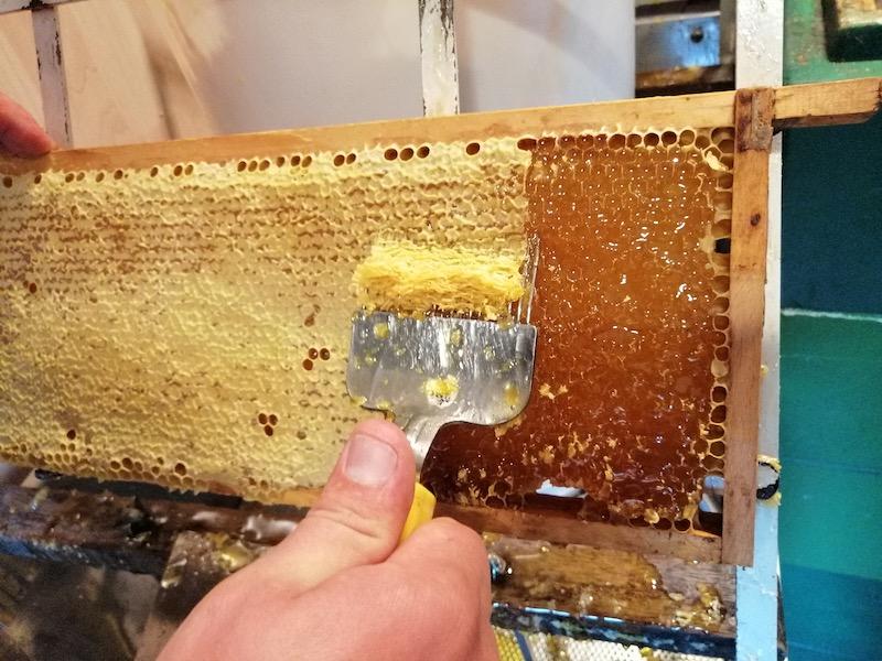 Beim Honig entdeckeln
