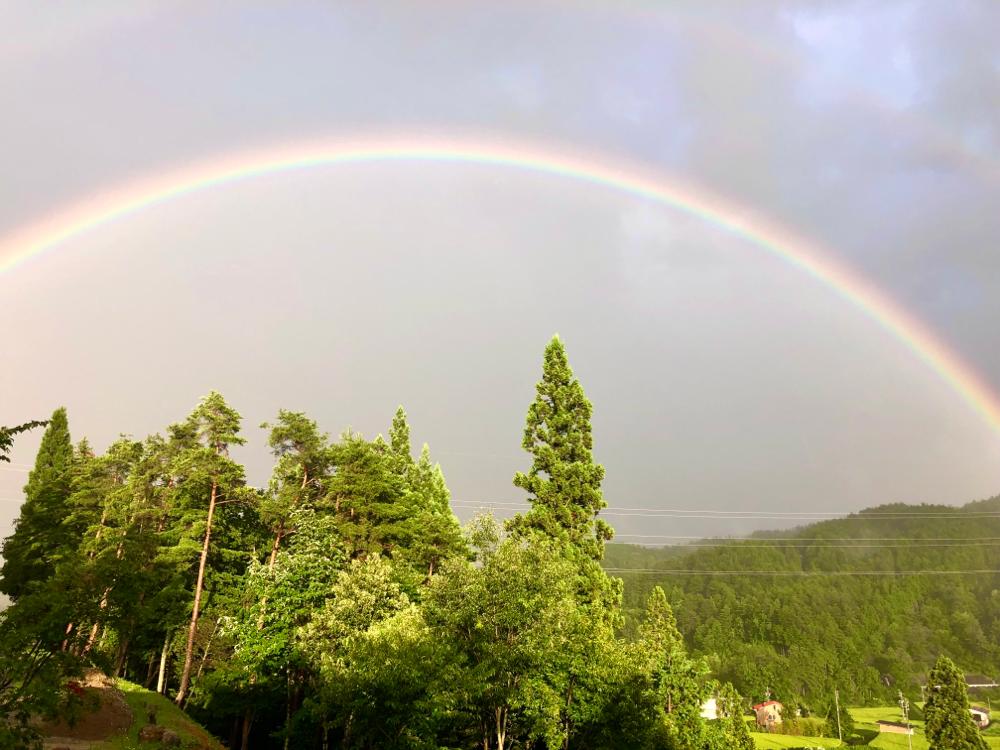 雨ばっかだけど、夕方大きい虹がでた。