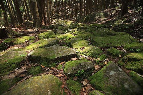 美しい石畳