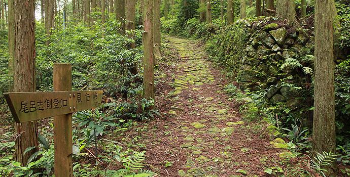 8】風伝峠道 - 熊野市観光協会