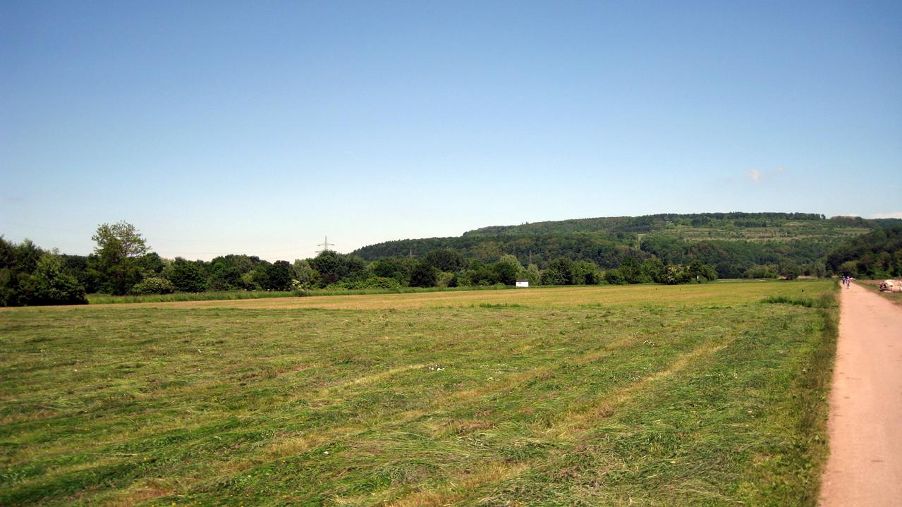 Beckinger Saaraue rechts der Saarseite in der Nähe des Biergartens