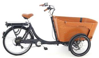 Babboe Carve-E Lasten e-Bike / Lastenfahrrad mit Elektromotor 2019