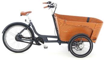 Babboe Carve Mountain Lasten e-Bike / Lastenfahrrad mit Elektromotor 2017