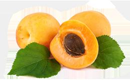 Aprikosenkern Öl