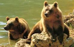 zoo de Gramat