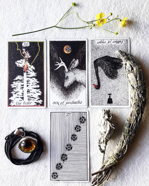 The Wild Unknown Tarot