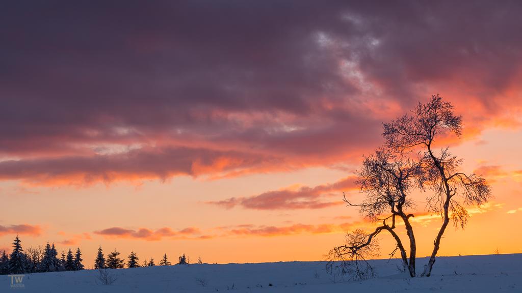 Intensive Farben nach Sonnenuntergang (B1262)