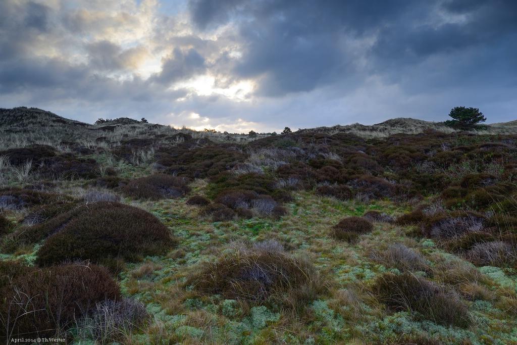 Die Landschaften dort bieten weitaus mehr als nur Dünen (B132)