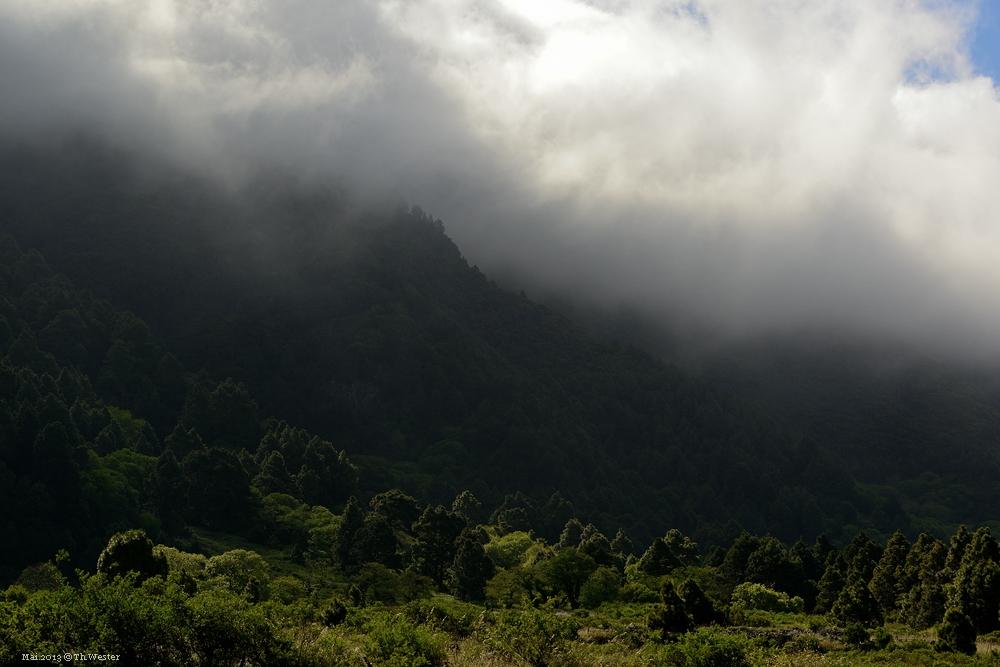 La Palma, nahe El Pilar (B19)