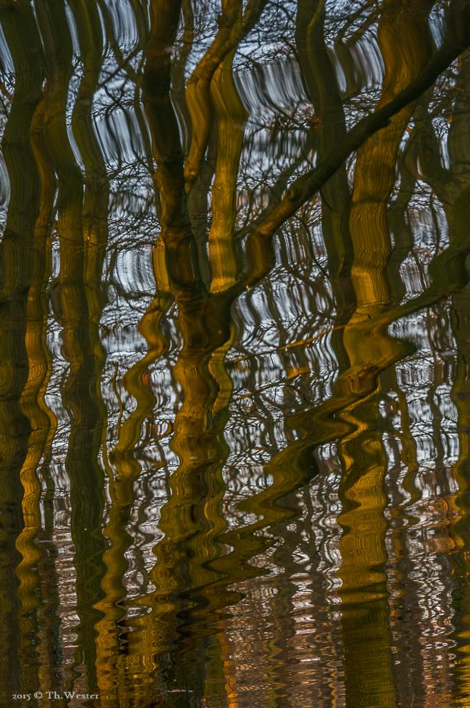 Wellenbäume (B432)