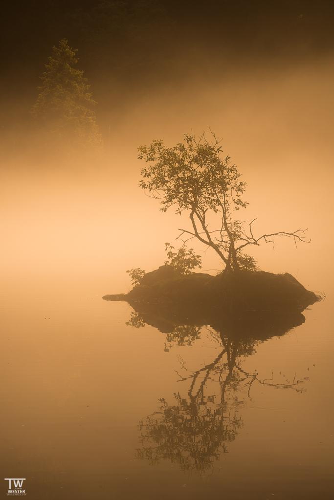 """Goldener Herbst"", Deutschland, Zugspitzareal"