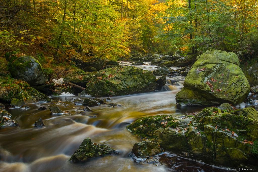 Trockenen Fußes kommt man nach einem Tag Fluss-Fotografie nicht nach Hause, aber was tun Fotografen nicht alles für eine gute Perspektive ;-) (B202)
