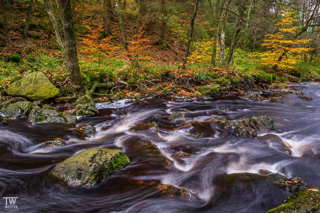 Fluss abwärts... (B1140)