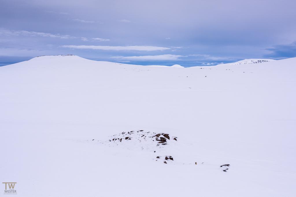 Im Gebirge (B1005)