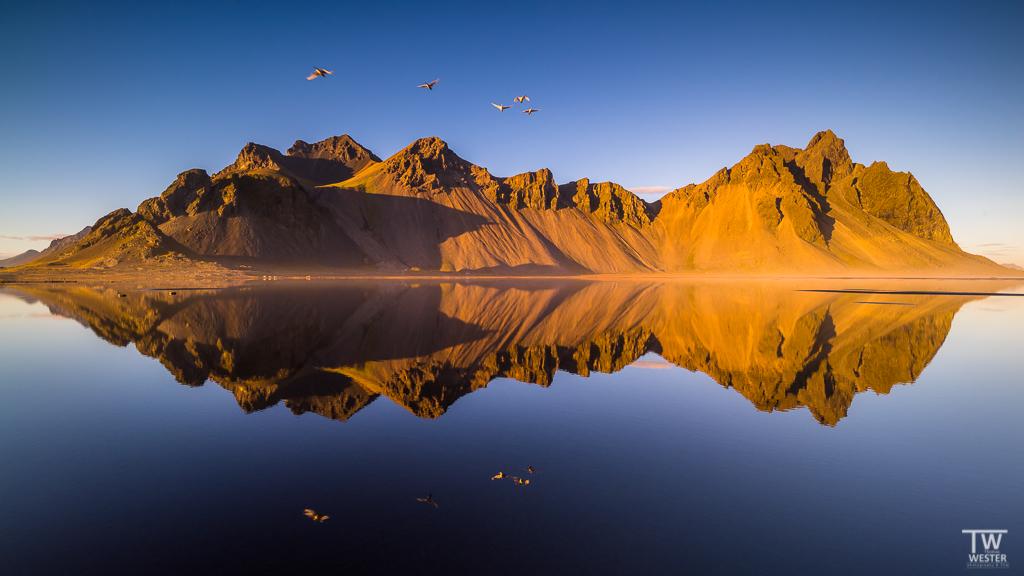 """""""Flight of the swans"""", Island (Stokksnes), an einem wunderschönen und absolut windstillen Oktoberabend"""
