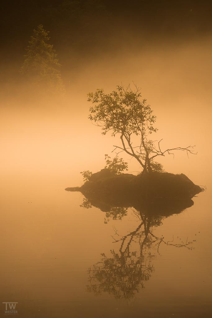 Am frühen Morgen (B1098)