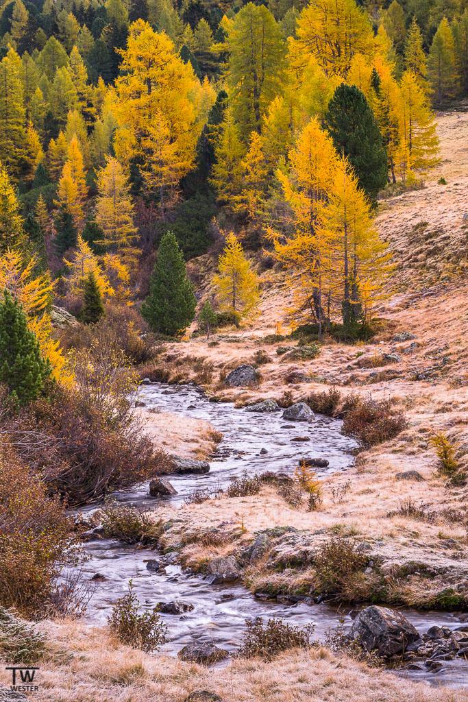 Bäche durchziehen die weite Landschaft der Dolomiten (B1123)