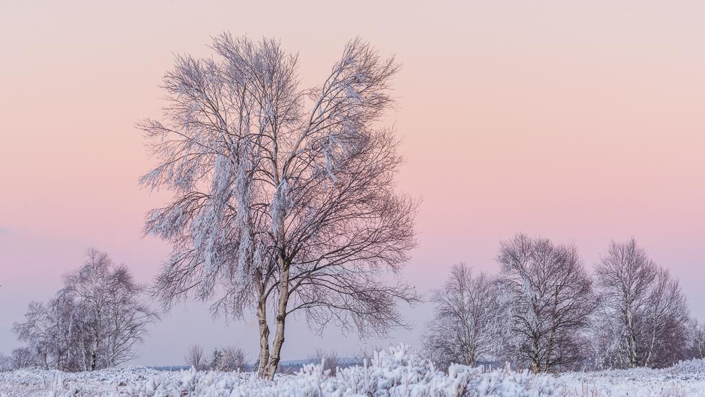 Zum Sonnenuntergang (B876)