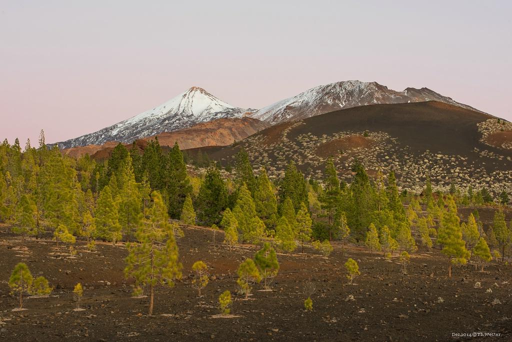 """Im Nationalpark """"del Teide"""". An diesem Abend, kurz nach Sonnenuntergang, färbte sich der Himmel ganz leicht rosa: die Farben dort oben waren sehr schön (B227)"""