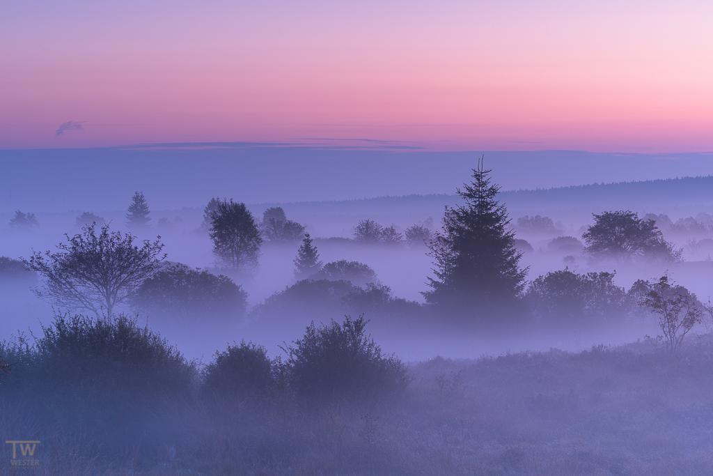 Der Horizont färbt sich bei diesen Bedingungen stets pastellfarben, was ich unheimlich mag, hier vor dem Sonnenaufgang (B1198)