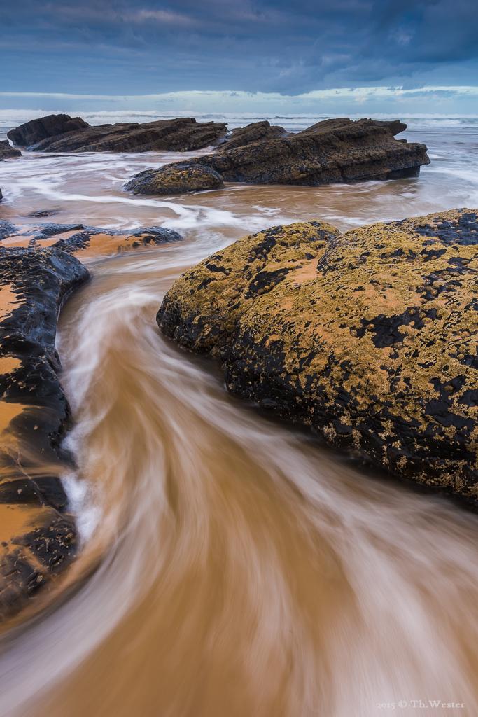 Meeresschlange (B385)