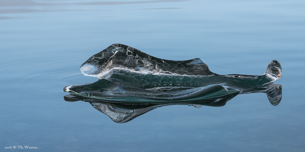 Eis-Wal ;-) (B792)