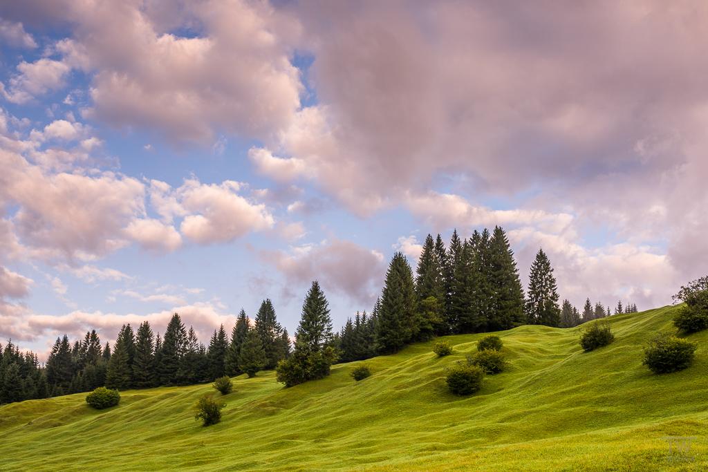 """Im unteren Bereich des """"Karwendelgebirges"""" gibt es im Hochsommer wunderschöne, saftig grüne Wiesen (B1111)"""