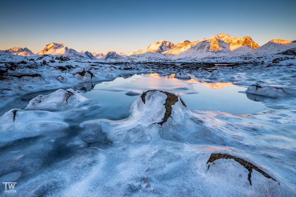 Durch die oben beschriebene gefrorene Tide bilden sich bei Ebbe interessante Risse in den Eisflächen, aus denen die trocken liegenden Wasserpflanzen herausschauen (B1276)