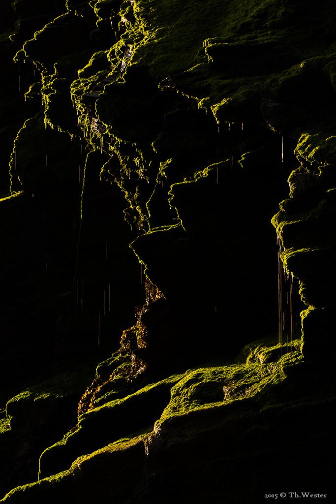 Diese Detailaufnahme der Klippen enstand morgens früh im Gegenlicht (B501)