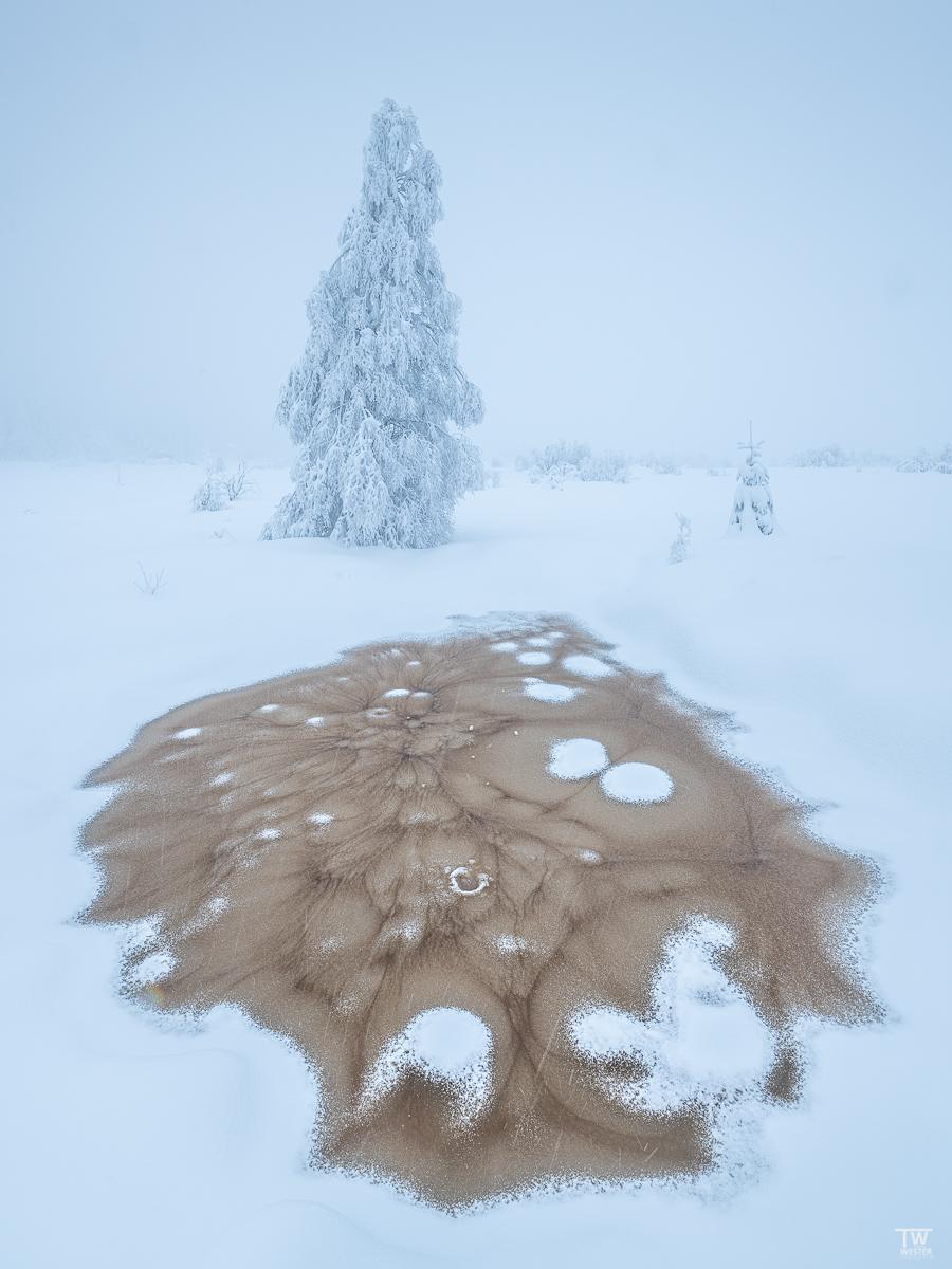 Abgefahrene Eisstrukturen im Venn bei Schneefall (B2366)
