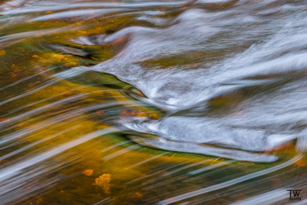 Herbstspiegelung (B1148)