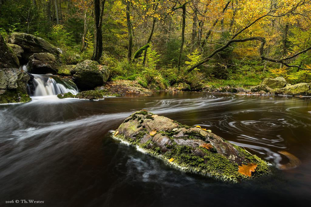 An dieser Stelle war der Herbst noch im Anfangsstadium (B774)