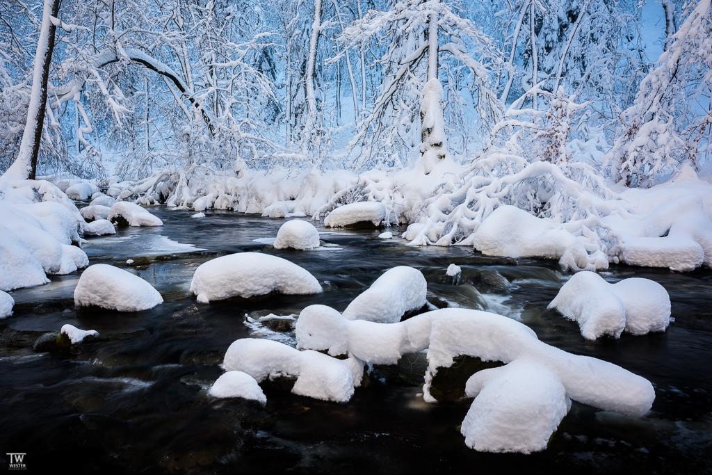 Bei strahlend blauem Himmel ergab sich der Effekt, dass der Fluss im normalen Licht erschien und die im Schatten liegende Waldseite in einem kräftigen Blau leuchtetete (B902)