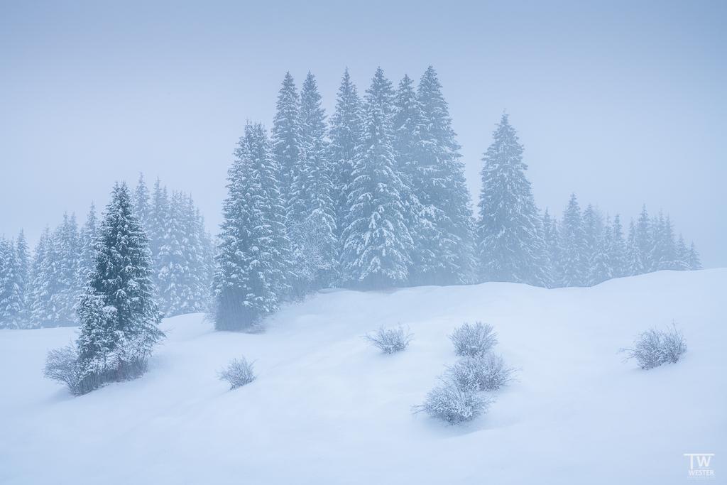 Solche Landschaften sieht man nahe des Karwendelgebirge: dafür war ich bei dichten Schneefall im Tiefschnee unterwegs (B1532)
