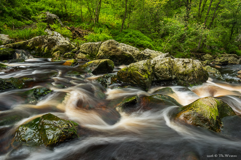 Im oberen Flussabschnitt... (B597)