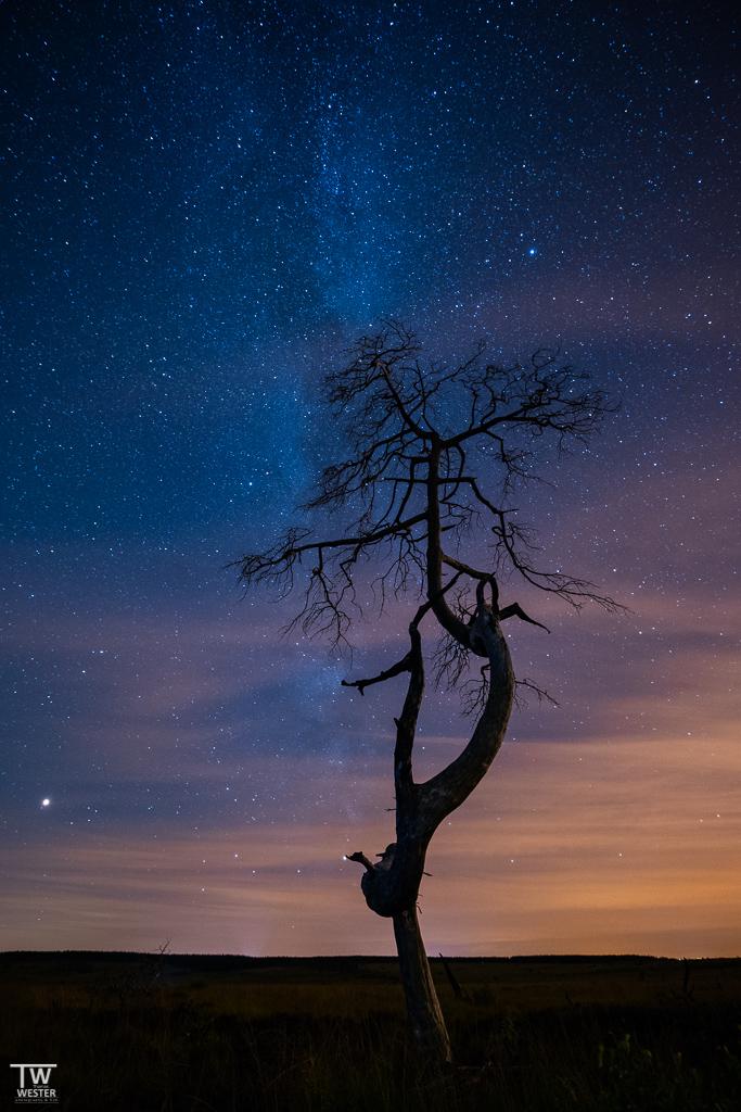 Der Sternenhimmel über dem Hohen Venn (B1416)