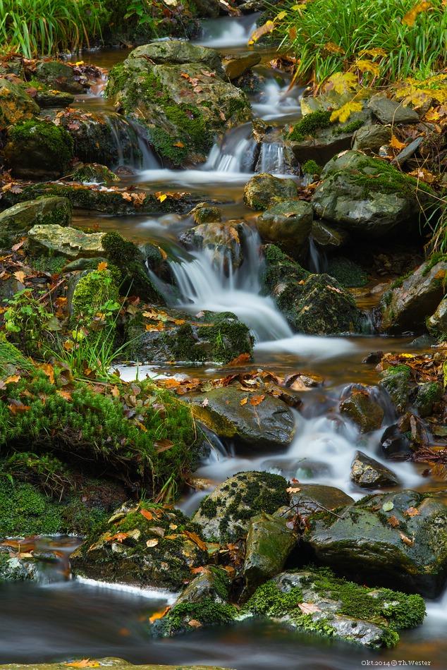 Die vielen kleinen Zuflüsse sind ebenfalls interessant zu fotografieren (B200)