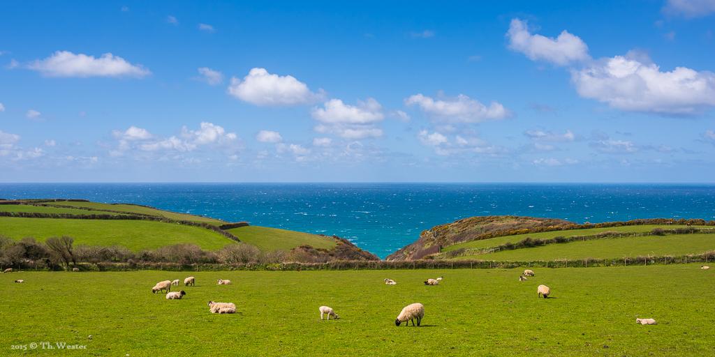 """Dieses letzte Bild lasse ich mir nicht nehmen: Kitsch pur ;-) Aber ganz ehrlich, so behalte ich Cornwall gerne in Erinnerung. Das Bild möchte ich zeigen, um einen Eindruck der Landschaft """"tagsüber"""" zu vermitteln. Es ist einfach wunderschön (B547)"""