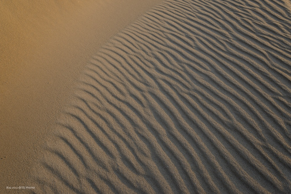 Dünen-Formen auf Texel (B73)