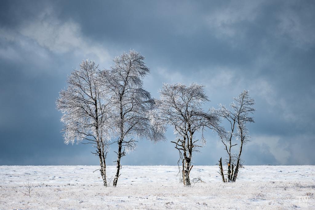 Selbst mittags hat man im Winter tolle Lichtbedingungen, wenn der Bewölkungsgrad stimmt… (B1550)