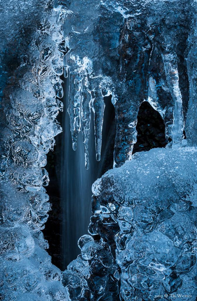 Als die Temperaturen anzogen, formierten sich wunderbare Eisdetails (B899)