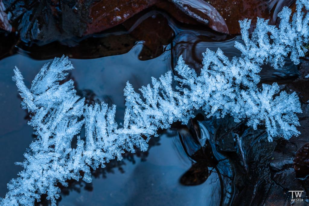 Bei mehrtägigen hohen Minusgraden entstehen an vielen Stellen solche Eiskristalle auf den am Boden liegenden Ästen (B1242)