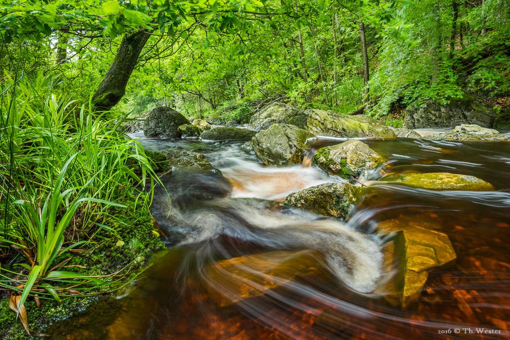 Hier wollte ich insbesondere die Farbe des Flusses in Szene setzen (B599)