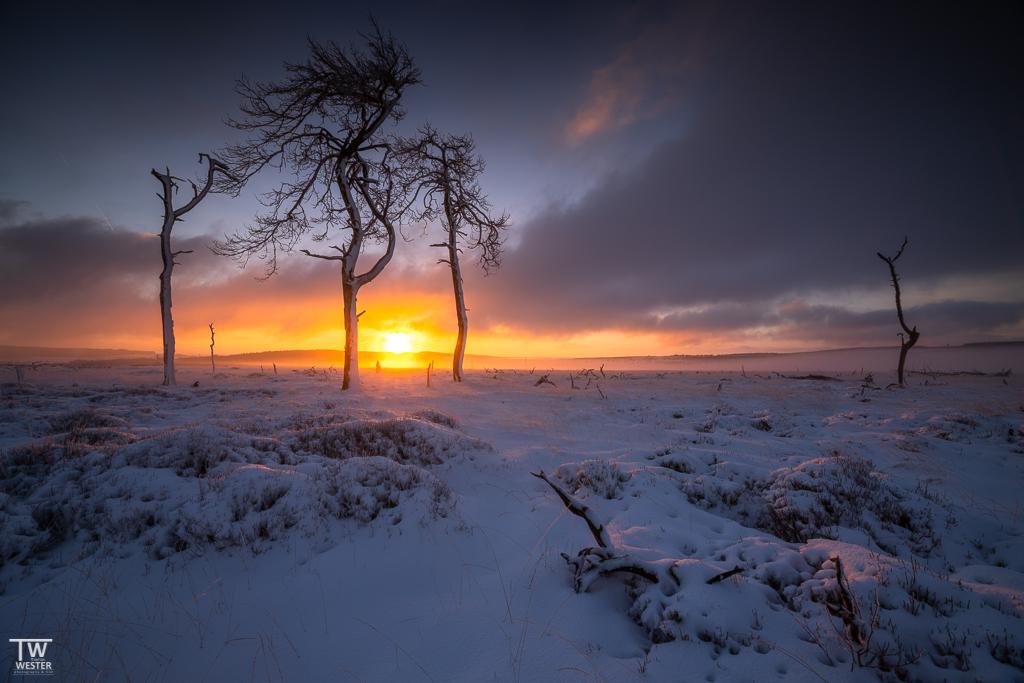 Dann brach die Sonne am Horizont durch und sorgte für ein paar wirklich sehenswerte Minuten (B1557)