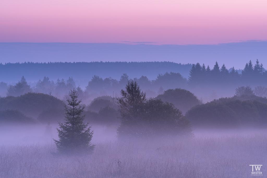 Früh am Morgen (B1189)