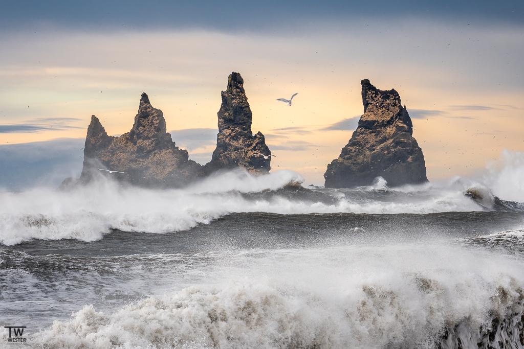 Eine zweite Version der Reynisdrangar Felsen; dass die Möwen bei solch rauen Bedingungen noch auf Fischfang gingen, war toll anzuschauen (B1638)