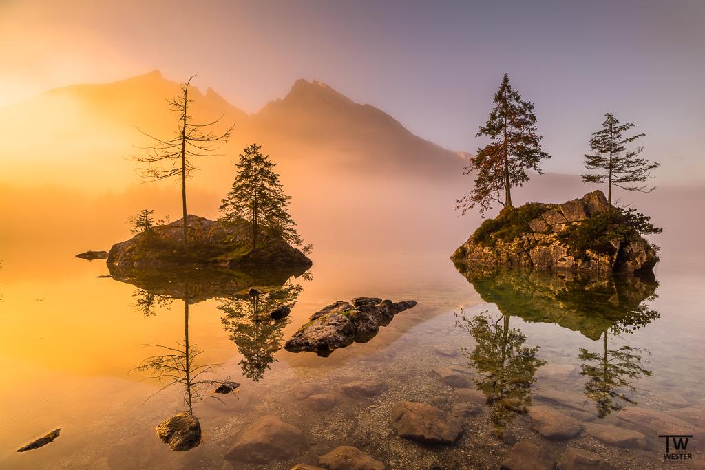 Nebel und Sonne: eine wunderbare Mischung (B1175)