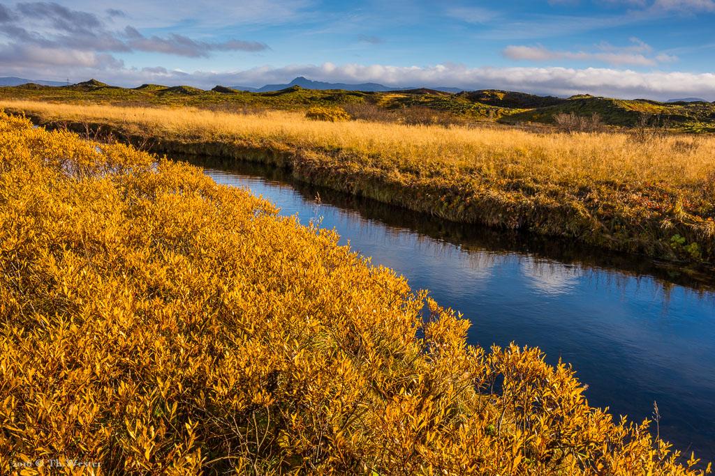 An vielen Flüssen zeigten sich im Oktober noch die isländischen Herbstfarben (B803)