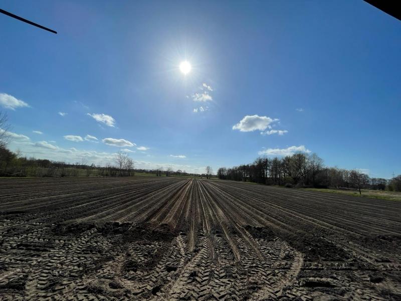Unsere leckeren Kartoffeln sind seit heute in der Erde. Wir hoffen auf einen guten Ertrag damit wir sie Ihnen wieder reichlich anbieten können.
