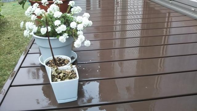 台風,災害,警戒,対策